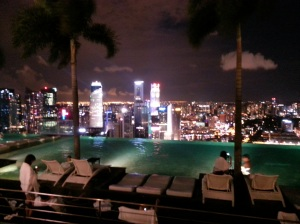 The famous Infinity Pool